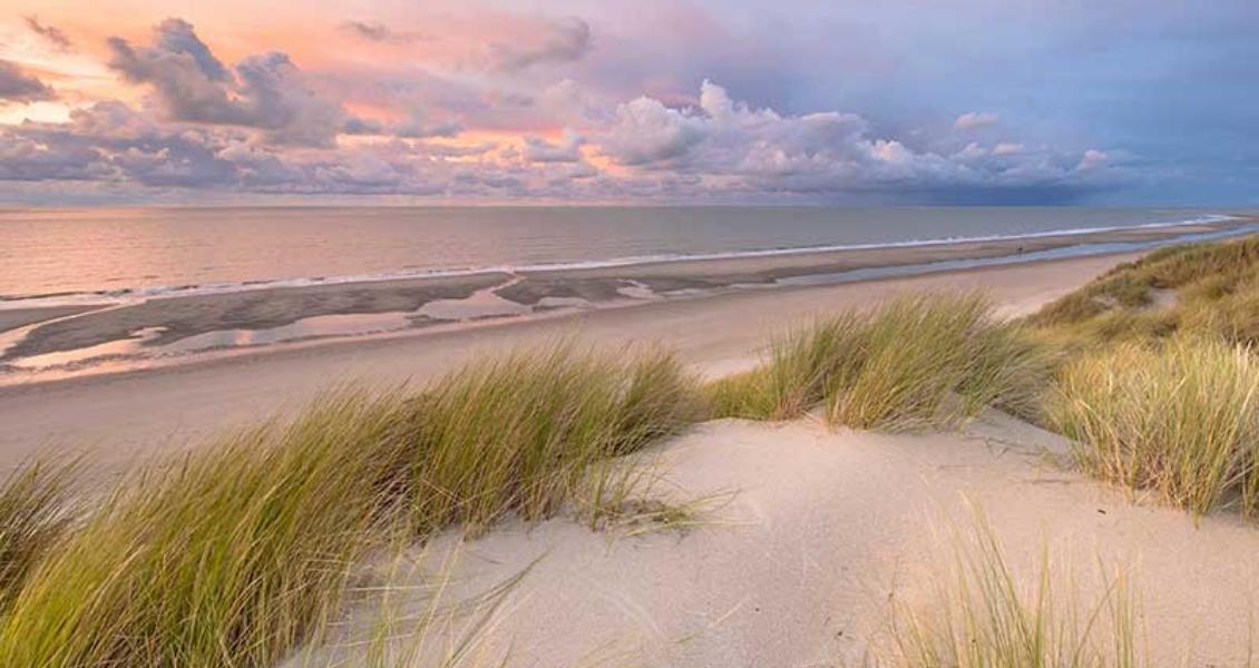 AdobeStock_280645631-sunset-seagrass-2×800